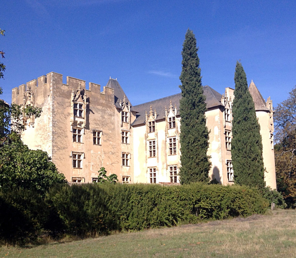 Chateau Allemagne-en-Provence